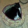 crochet pet bed with tina